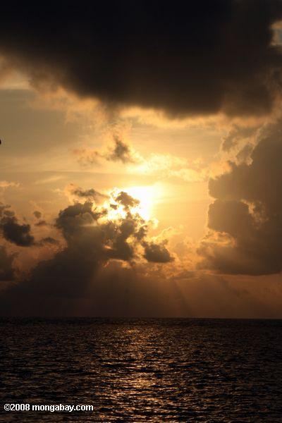 Sunrise seen from the beach of Blackbird Caye