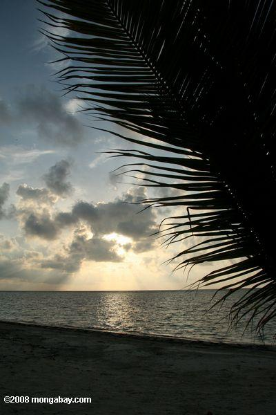 Sunrise on Turneffe Atoll