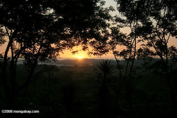 Sunset over the tropical forest of Belize's Cayo District