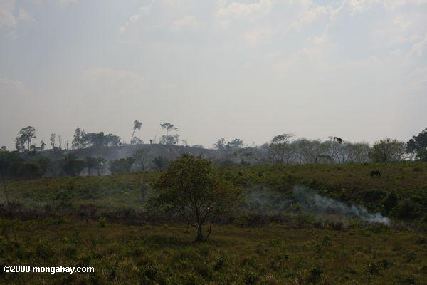 Burning the savanna in Guatemala