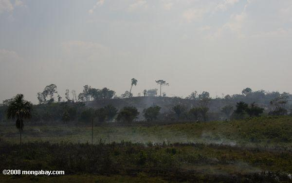 Burning the savanna for agriculture in Guatemala