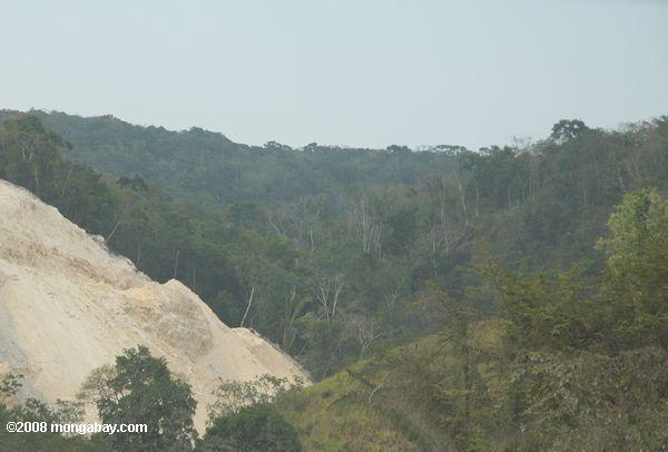 Forest land mined for limestone for road construction