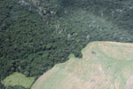 Overhead view of land cleared in the Amazon for agriculture