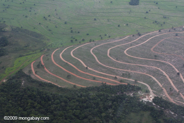 Cleared Cerrado in Mato Grosso, Brazil. Photo by Rhett A. Butler.