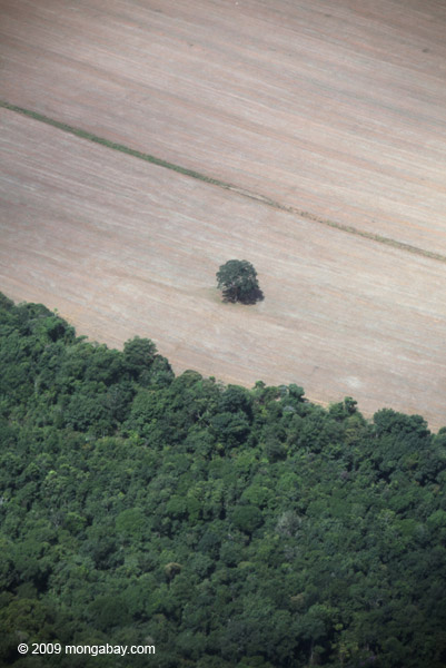 Deforestation in the Brazilian Amazon. The Rio+20 agreement to date largely ignores the issue of deforestation. Photo by: Rhett A. Butler.
