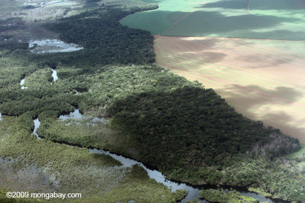 River and forest abuts vast soy field in the Brazilian Amazon. Photo by: Rhett A. Butler.