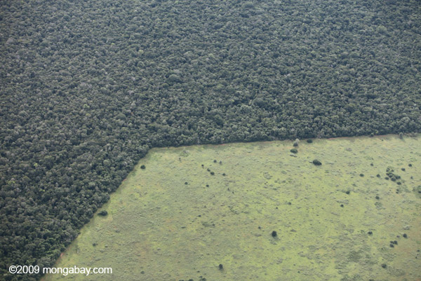 Geometric patterns of deforestation in the Brazilian Amazon. Cattle ranching and soy are the biggest destroyers of forest in this part of the world. Photo by: Rhett A. Butler.