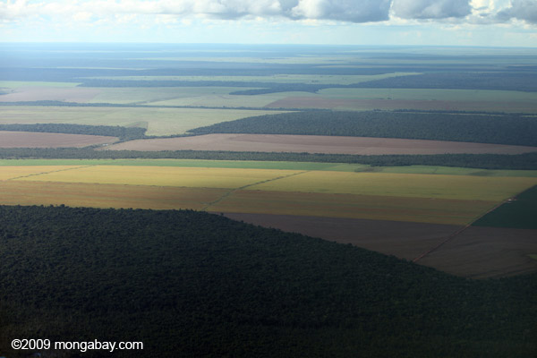 Patchwork of legal forest reserves, pasture, and soy farms in the Brazilian Amazon.