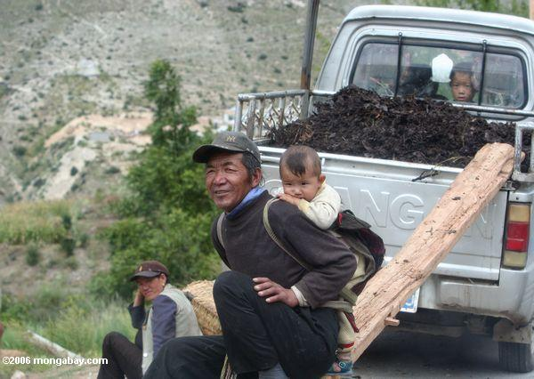 Conservation compliance programs could be supported in China, where farmers receive substantial government subsidies. Photo of a farmer and child taken in Tibetan Yunnan, (southern China) by Rhett A. Butler, mongabay.com.