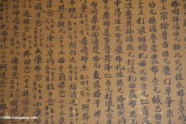 Buddhist prayers written in Chinese
