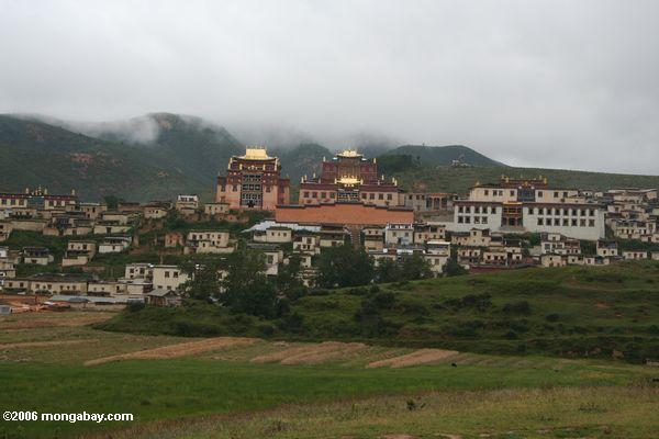 sumtsanlang monsatery в gyalthang