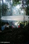 Kitchen at our camp site in the Amazon rainforest