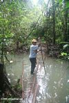 Stream crossing in the Colombian Amazon