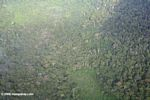 Aerial view of forest and small scale agricultural clearing in the Colombian Amazon