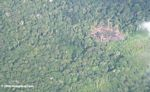 Plane view of slash-and-burn forest clearing in the Amazon