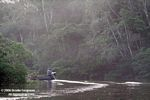 Motorized canoe moving up a tributary of the Amazon river