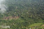 Overhead view of slash-and-burn agriculture in the Amazon rainforest