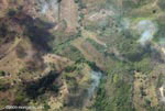 Aerial view of new oil palm plantations in Costa Rica