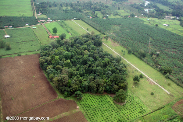 Aerial view of forest fragment in Costa Rica. Photo by: Rhett A. Butler.