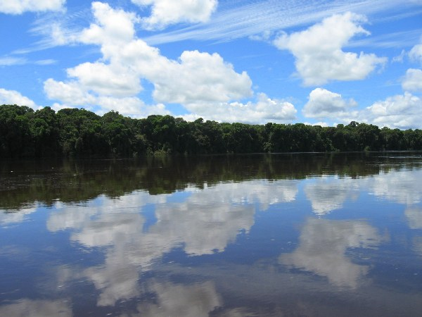 River and forest in Guyana's Amazon. Photo by: Tiffany Roufs.