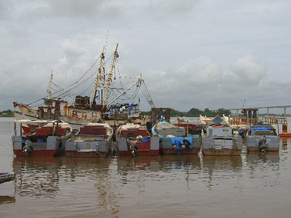 Boats in the quay