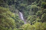 Waterfall flowing into the Bohorok River