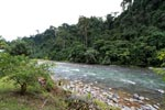 The clear-flowing Bohorok river