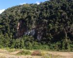 Karst forest in Laos