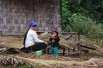 Hmong mother weaving straw thatch