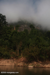 Fog clearing over forest along the Nam Ou river