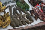 Bananas, squirrels, colorful songbirds, tadpoles, riverweed, and dried bamboo rats in the Luang Prabang morning market