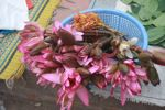 Louts flowers in the Luang Prabang morning market