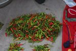Pile of chili peppers