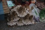 Garlic bunches in the Luang Prabang morning market