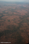 Forest fragments and riparian forest strips on an otherwise deforested plain in Southern Laos