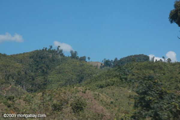 Cleared, degraded, and natuve forest in Laos