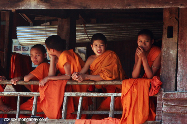 Young monks in Laos. Photo by: Rhett A. Butler.