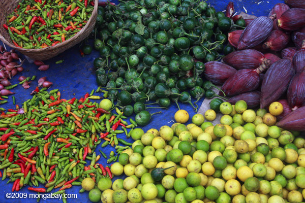 Limes, chilis, and fruit in the Luang Prabang morning market