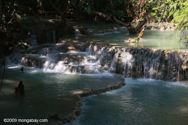 Creek below Tad Kwang Si waterfall