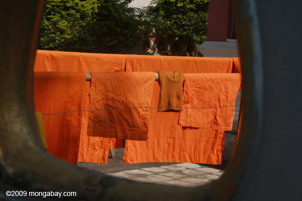 Monk robes drying in the sun