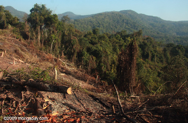 Deforestation on the edge of Nam Et-Phou Louey National Protected Area in Laos. Photo by: Rhett A. Butler.