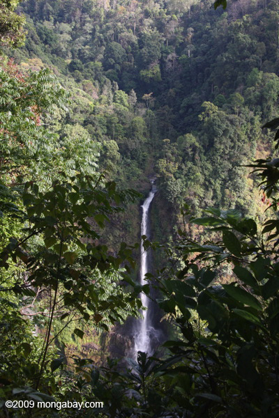 Laos' tallest waterfall