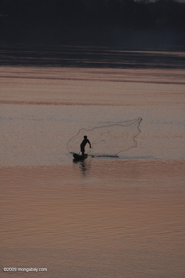 Throw net fishing at sunrise in the 4000 islands section of the Meking