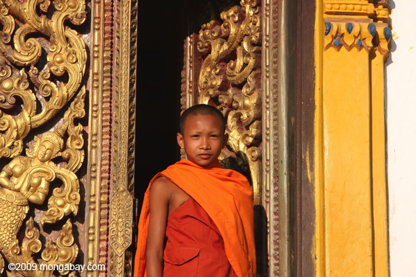 Picture: Young monk in Laos