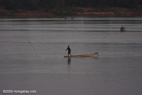 Throw-net fishing on the Mekong