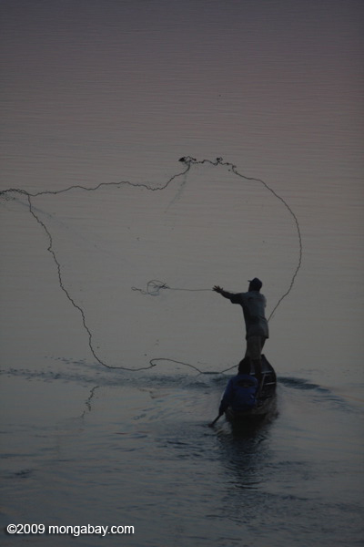 Researchers say the Xayaburi Dam on the Mekong would hit fishermen hard. Here, a man fishes at dawn on the Mekong River in Laos. Photo by: Rhett A. Butler.