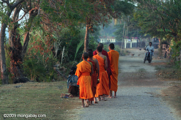 Giving of alms to monks in Muang Khong