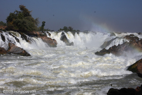 Picture: the threatened Khone Phapheng Falls in Laos