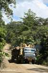 Logging truck carrying timber out of the Malaysian rainforest