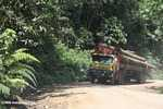 Logging truck carrying timber out of the Malaysian rainforest -- borneo_2986